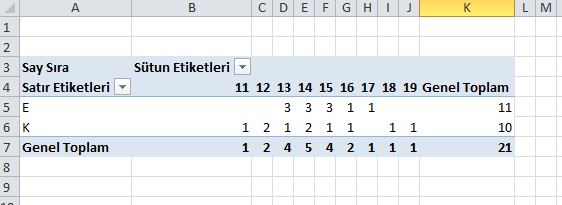 excel özet tablo